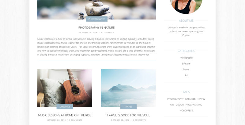 newbie-wp-theme-by-dtbaker
